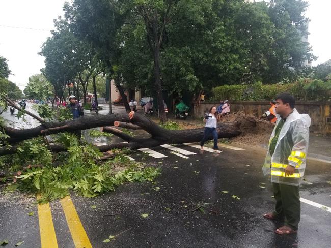 Chùm ảnh: Nhà dân tốc mái và cây xanh, trụ điện gãy đổ hàng loạt ở Huế - Ảnh 9.